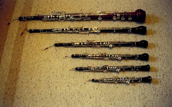 Oboe family: musette, oboe, oboe d'amore, English horn, oboe de caccia, heckelphone. (Image: Wikipedia)