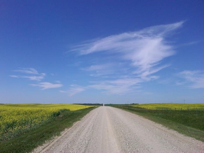 Near Carmel, Saskatchewan, July 2012 (Photo: Hendrik Slegtenhorst)