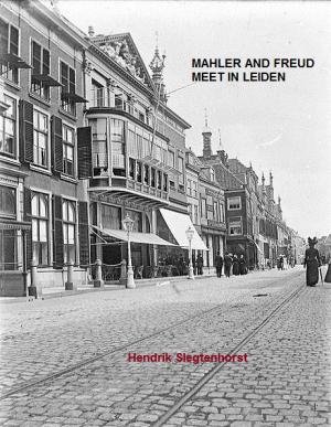 Den Vergulden Turk, where Mahler and Freud met, Breestraat, Leiden, Netherlands