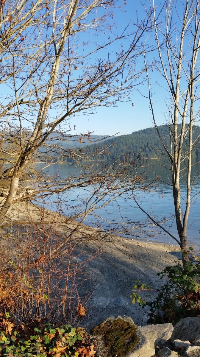 Malcolm Lowry Trail, Cates Park, Burrard Inlet, Dollarton, North Vancouver, BC