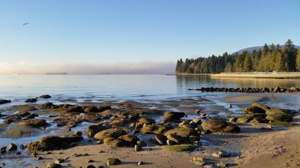English Bay, Stanley Park, Vancouver, Canada. 2 January 2016. Photo: Hendrik Slegtenhorst
