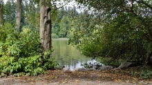 Lost Lagoon, Stanley Park, Vancouver BC, Canada. 10 August 2016. (Photo: Hendrik Slegtenhorst)