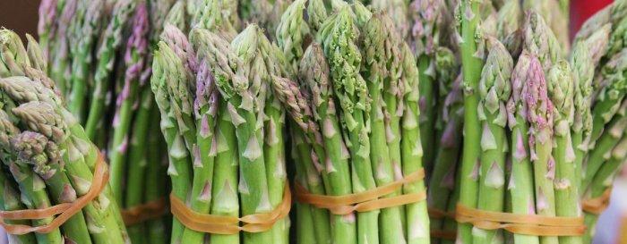 asparagus-large