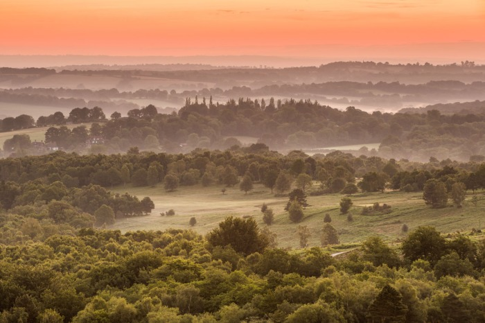 Ashdown-Forrest-Sunrise-2